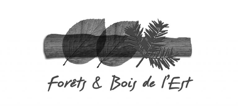 FBE-logo-NB